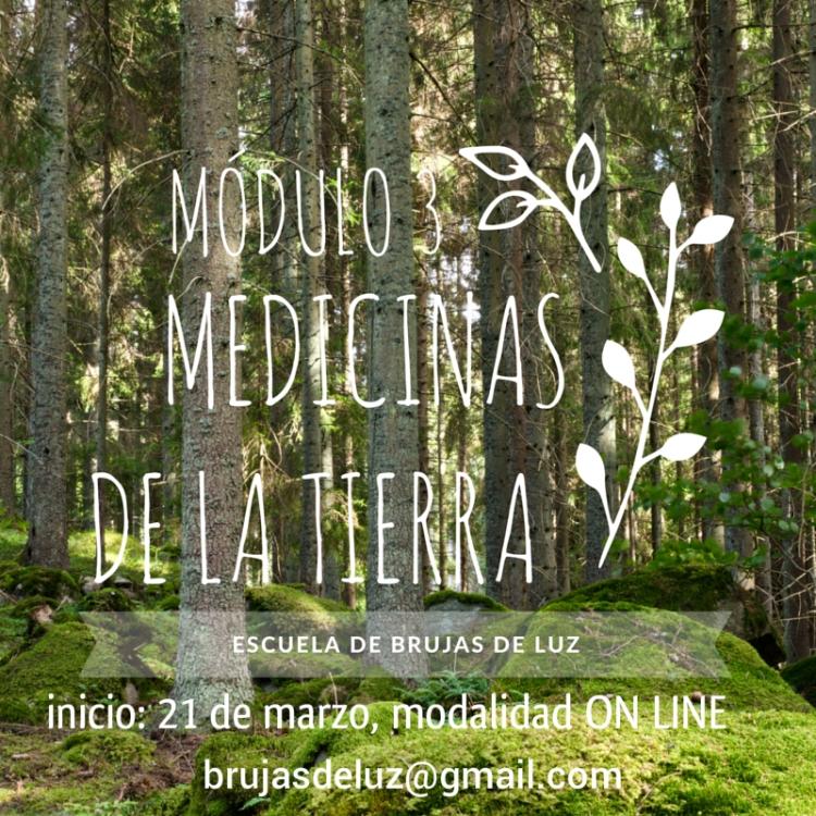Medicinas de la tierra